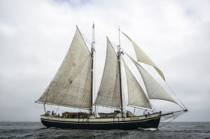 Mist of Avalon is coming to Grand Portage 2016